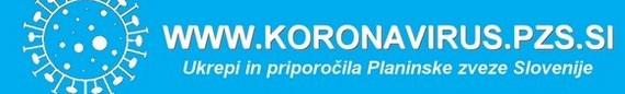 koronavirus_570_n