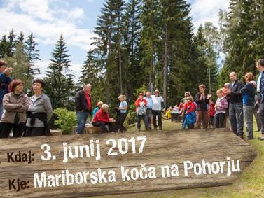 MariborskaKoca_majhna