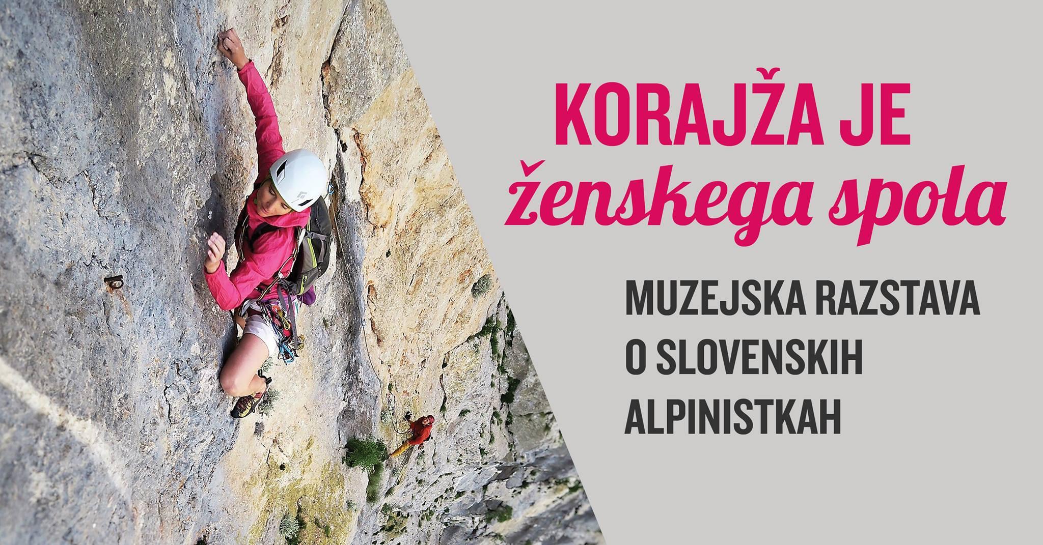 korajza_je_zenskega_spola
