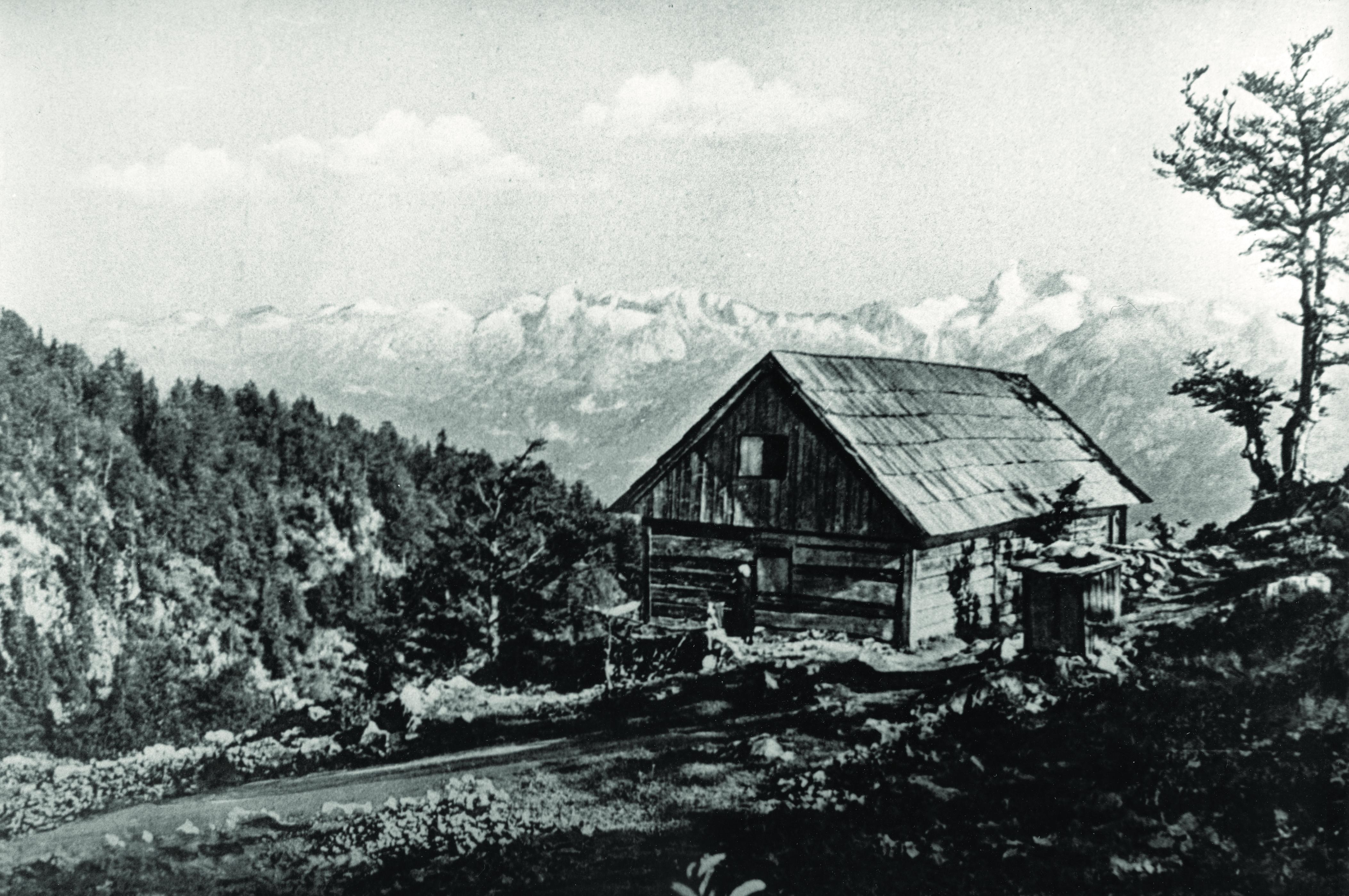 038_Oroznova_koca_1894
