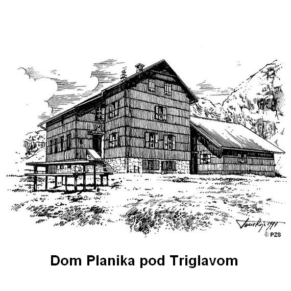 planika_570x570