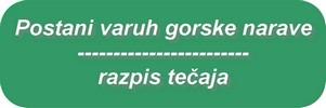 tecaj_vgn_gumb