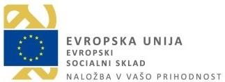 logo_ess_ss