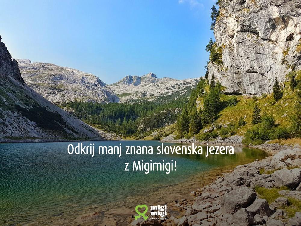 Planinska_zveza_1000px